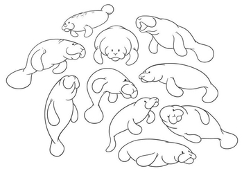 Free Cartoon Manatee Vector - Free vector #400899