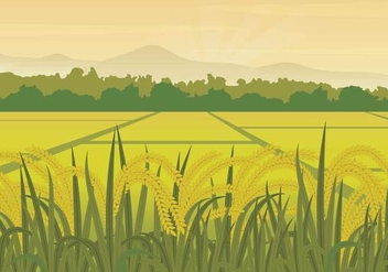 Free Rice Field Illustration - Kostenloses vector #402439