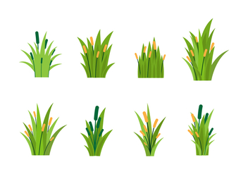 Free Reeds Vector - Free vector #402709