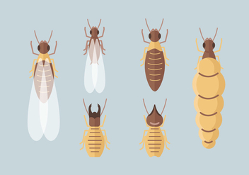 Termite Vector Packs - vector gratuit #403099