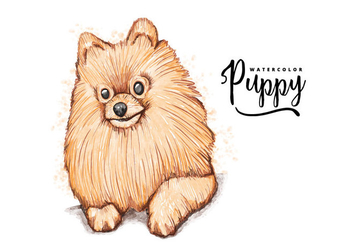Free Pomeranian Background - vector gratuit #403599