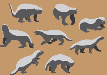 Free Honey Badger Icons Vector - Kostenloses vector #405999
