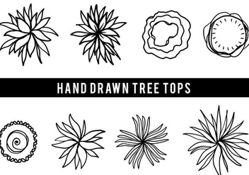 Free Hand Drawn Tree Tops Vector - Free vector #406049