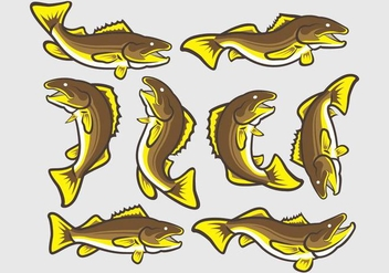Walleye Fish Icons - vector #406269 gratis