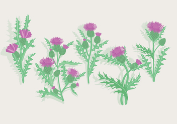Thistle Vector - Free vector #406949