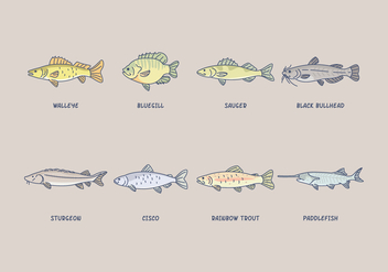 Free Freshwater Fish Vector - Free vector #408279