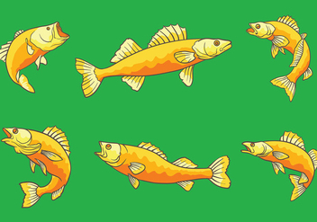 Free Walleye Icons Vector - Free vector #408629