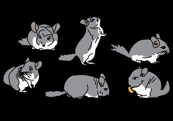 Chinchilla Vector Pack 1 - vector gratuit #408849
