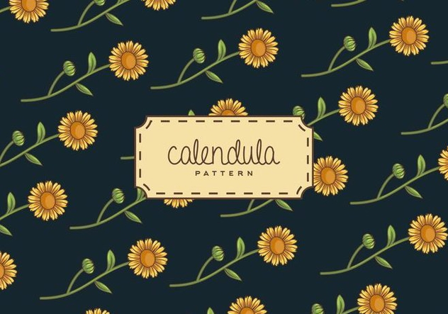 Calendula Background - Free vector #409259