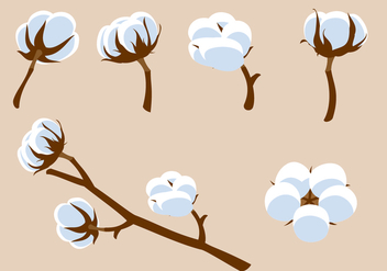 Cotton Flower Free Vector - vector #410199 gratis