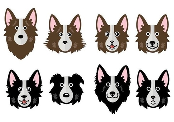 Free Border Collie Vector Illustration - Kostenloses vector #411659