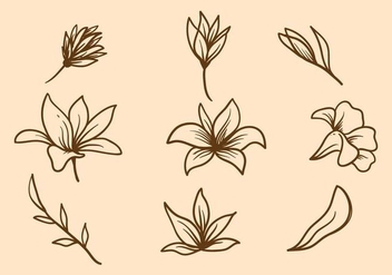 Free Easter Lily Vector - Kostenloses vector #412099