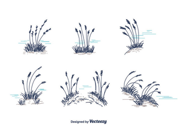 Hand Drawn Sea Oats Vector - vector gratuit #413819