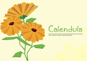 Free Calendula Illustration - Free vector #414059