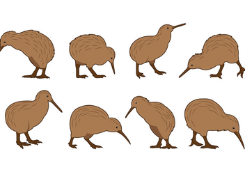 Set Of Kiwi Bird Vectors - Free vector #414249