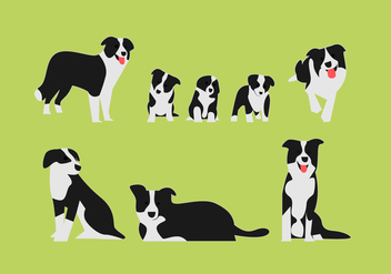 Border Collie Vector Illustrarion Sets - Kostenloses vector #418029