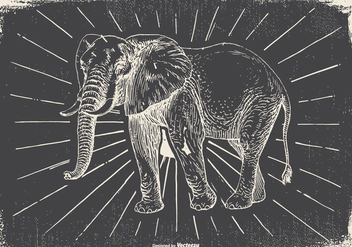 Vintage Elephant Illustration - Free vector #418119