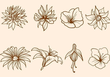 Free Hand Drawn Flower Vector - Free vector #418249