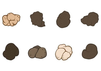 Free Truffles Vector - Free vector #418949