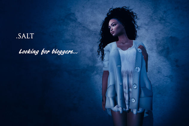.SALT ..... Looking for bloggers - image gratuit #422709