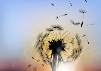 Beautiful Dandelion With Sunset Background - Kostenloses vector #423609