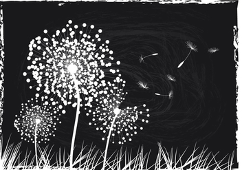 Black And White Dandelion Background - Kostenloses vector #423619