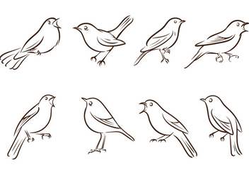 Free Nightingale Vectors - Free vector #425129