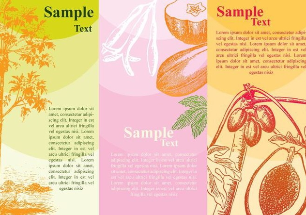 Papaya Banners - Free vector #425329
