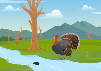 Wild Turkey Illustration Vector - Free vector #426349