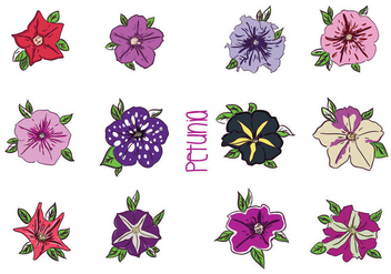 Various Petunia Flower Vectors - бесплатный vector #427199