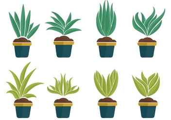 Free Yucca Plant Icons Vector - Free vector #428519