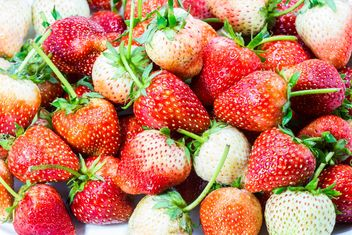 Fresh strawberries background - Free image #428779