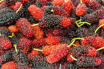 Black and red mulberry background - Free image #428789