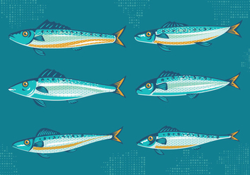 Set of Sardine or Pilchard with Vintage Style Vectors - vector gratuit #428989
