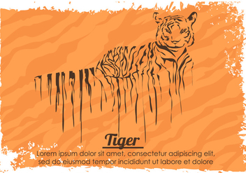 Painted Dripping Tiger With Stripes Vector - Kostenloses vector #429539