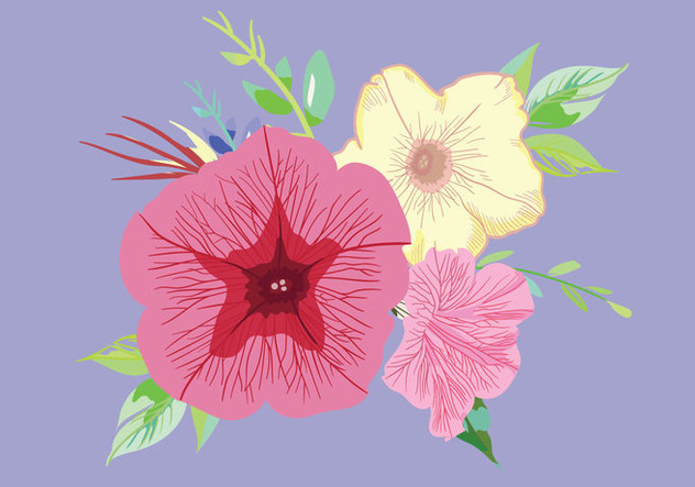Petunia Bouquet Vector - бесплатный vector #430269