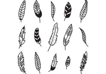Set Of Feathers - vector gratuit #432189