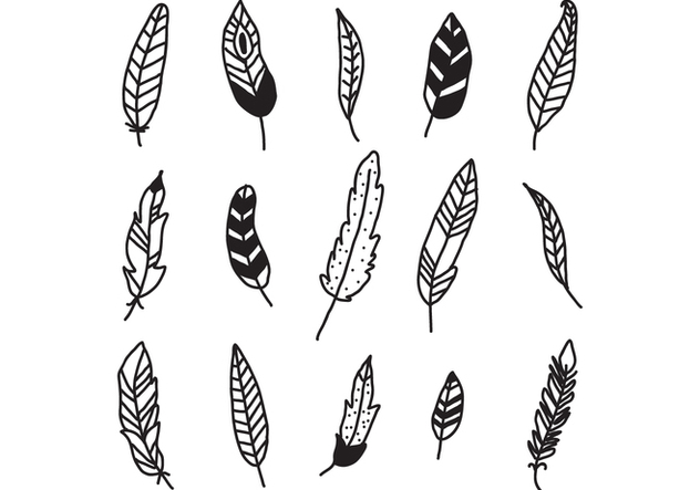 Set Of Feathers - Kostenloses vector #432189