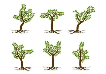 Free Unique Tree with Roots Vectors - vector gratuit #433069