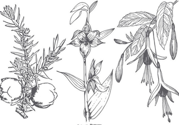 Vinatge Flower Collection - Free vector #433369