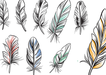 Free Vintage Feathers Vectors - Free vector #433639