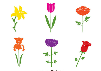 Colorful Flowers Collection Vectors - vector gratuit #433749