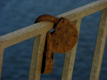 Rust_in_love - Free image #434029