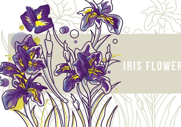 Line Drawing Of Iris Flower : Descargar vector iris flower banner line art gratis