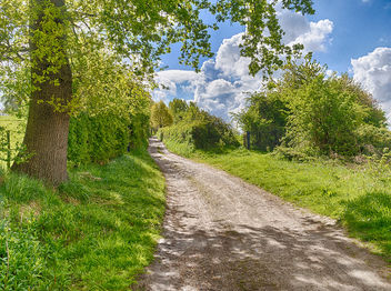 Walking Trail - image gratuit #435169