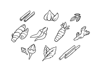 Free Culinary Spices Hand Drawn Icon Vector - vector #435259 gratis