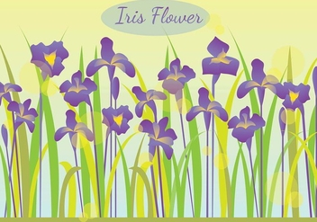 Iris Flower In The Morning Illustration - Free vector #435549