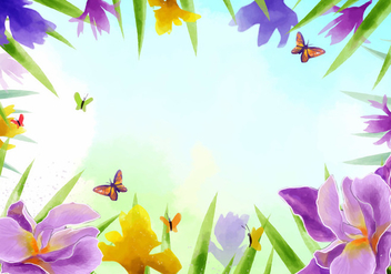 Frame of Iris Flowers Vector - vector gratuit #435589