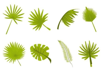 Free Tropical Leaves Palm Vector - vector #436349 gratis