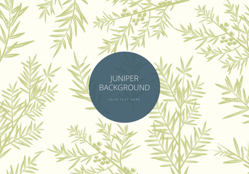 Free Juniper Background Vector - vector gratuit #436699